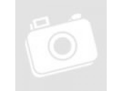 Бачок омывателя с моторчиком HANIA HANIA (ХАНИЯ) NZ1651860020 фото 1 Череповец